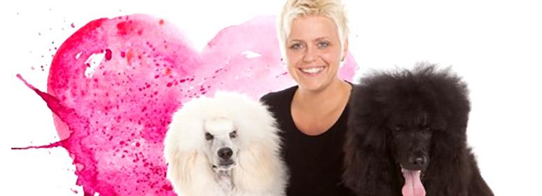 background-Hundeverliebt - Dein Hundesalon